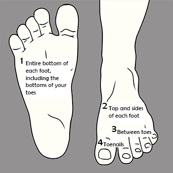 diagram-areas-of-foot.jpg