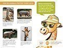 spot-how-do-animals-protect-their-skin-thumbnail.jpg